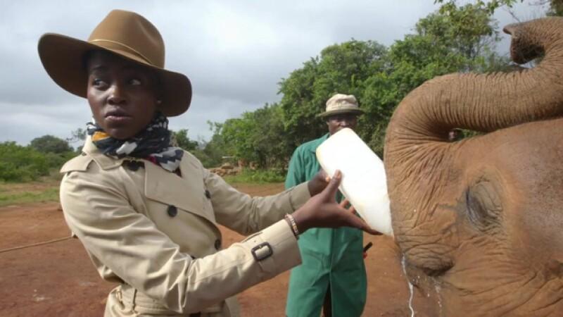 En otra imagen podemos ver a la actriz alimentando a un pequeño elefante.