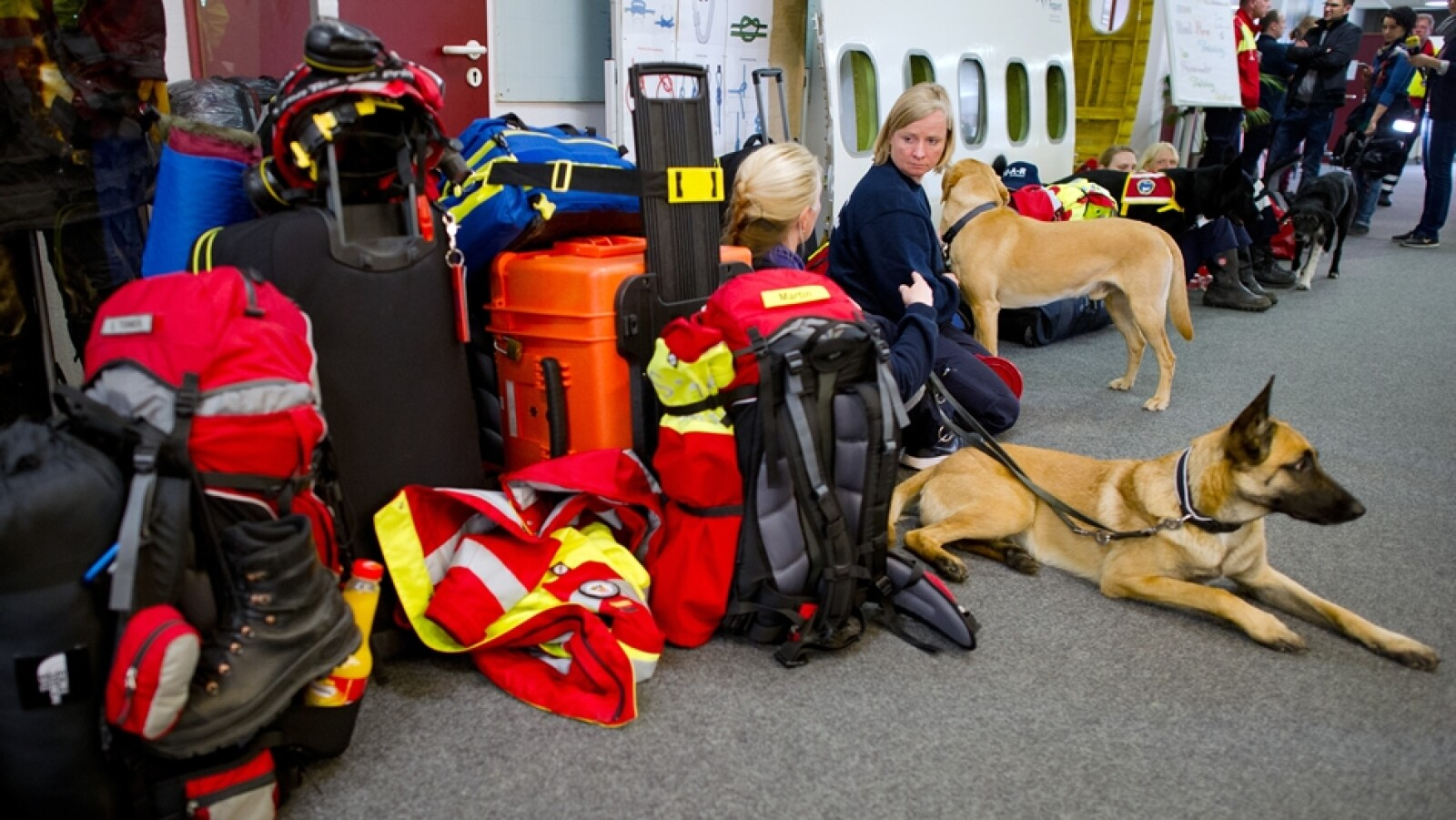Perros rescate Alemania sismo Nepal