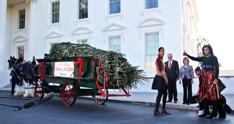 El Estado que este año se encargó de suministrar el árbol navideño a la familia Obama fue Carolina del Norte.