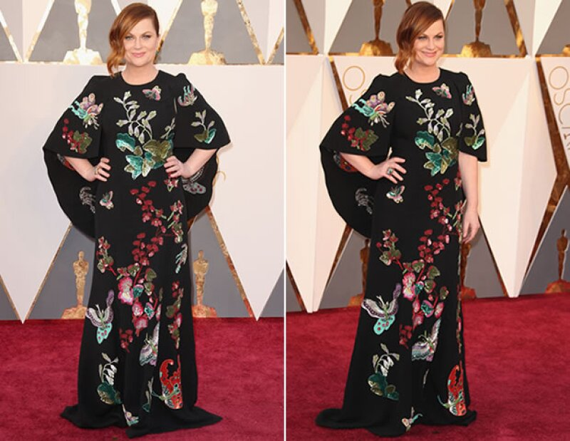 Amy Poehler no acertó en su elección de vestido.
