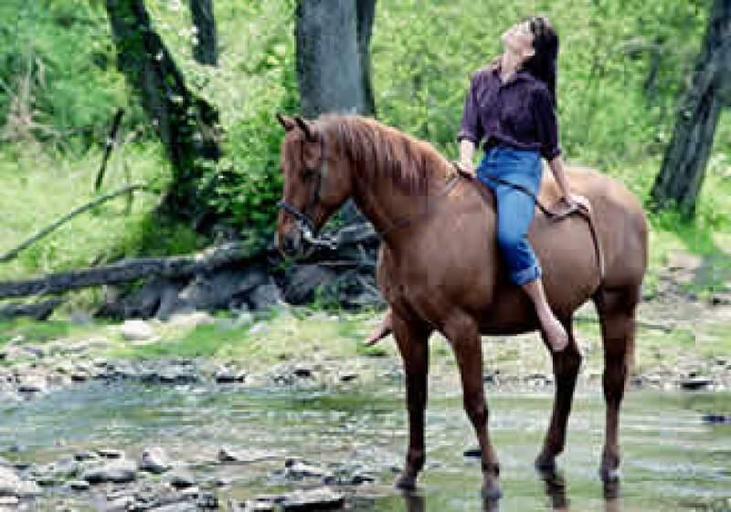 El costo del tratamiento con caballos puede ir desde 380 pesos por sesión hasta 2,250 pesos mensuales. (Foto: Jupiter Images)