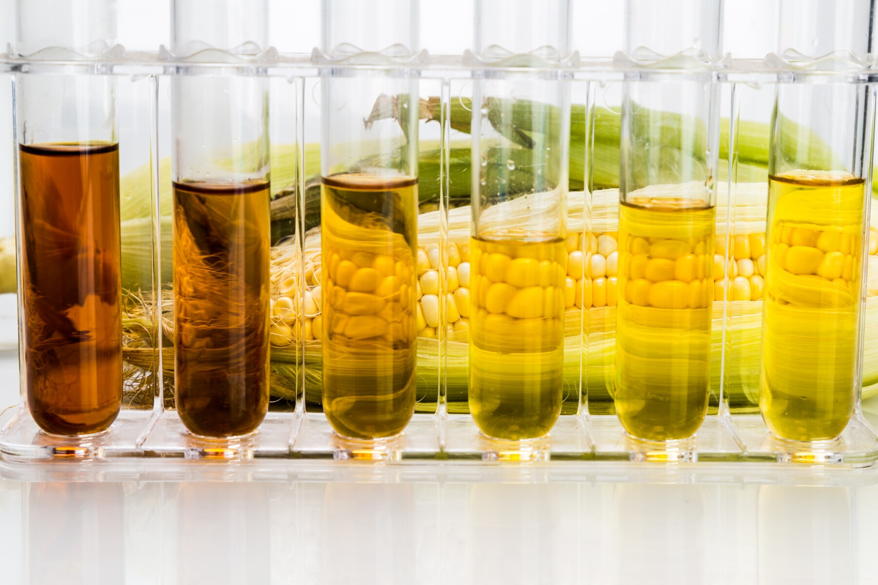 Corn derived ethanol biofuel with test tubes on white background