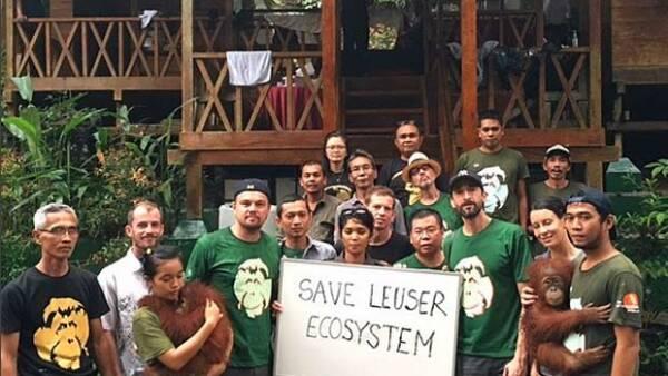 Las críticas del ganador del Oscar sobre la destrucción de los bosques tropicales hicieron que el gobierno de dicho país se molestara por su falta de información al respecto.