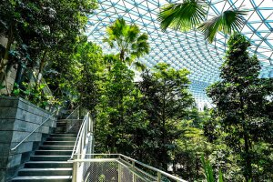 Aeropuerto - Jewel Changi.jpg