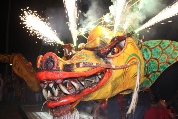 Año Nuevo chino Careyes 2017