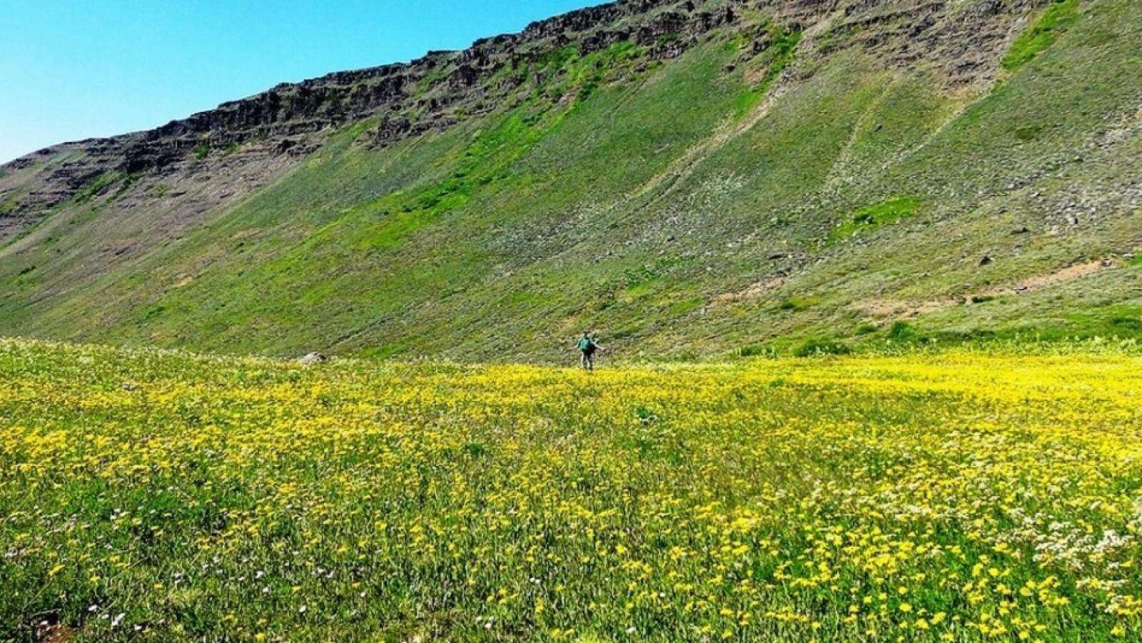 Senda del Desierto de Oregon (Estados Unidos)