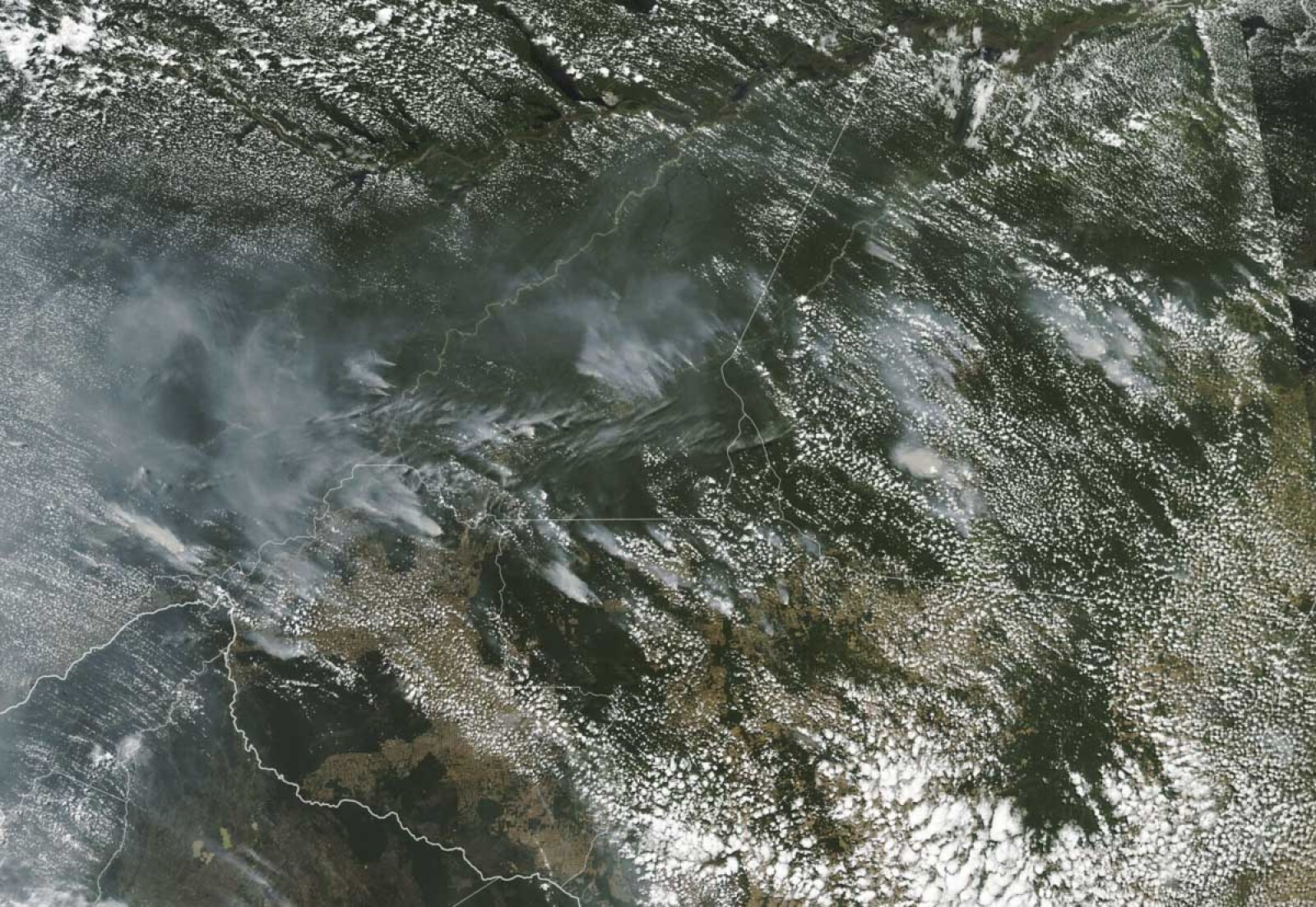 Incendio Amazonas-4