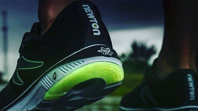 Sneakers Newton