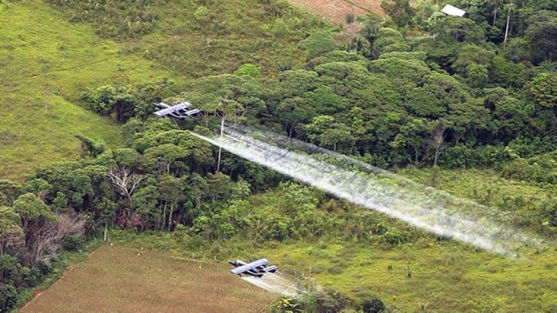 Aviones fumigan cultivos de coca