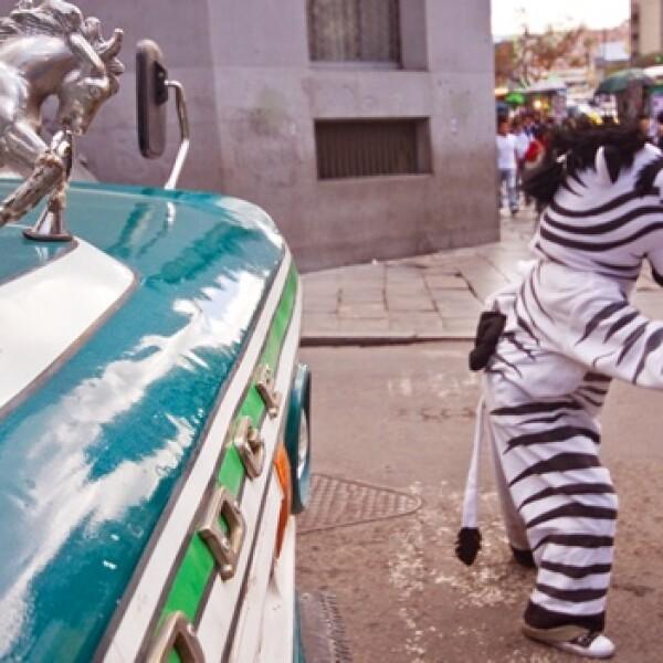irpt-zebra-bol1