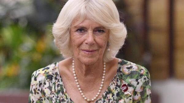 Camilla en África, 2018