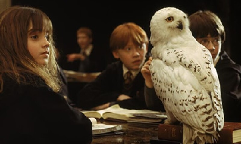 Diferentes búhos han sido utilizados para las películas de Harry Potter. (Foto: Facebook/HarryPotterMovie)
