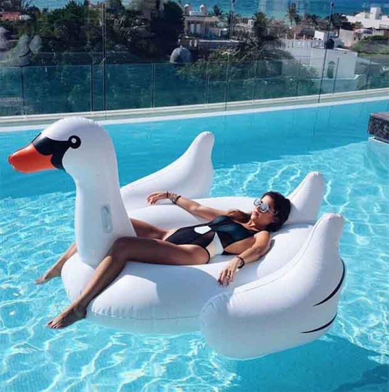 Pam Allier disfruta tomar en sol en un ganzo