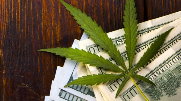 Green Leaf of Cannabis, Marijuana, Ganja, Hemp on a Bill 100 US Dollars. business concept. Cannabis leaf and Dollar banknotes.