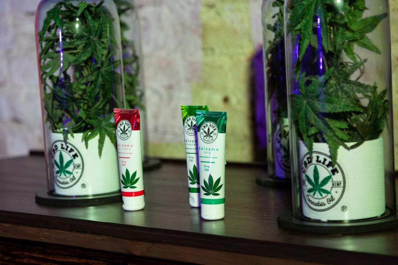 Una alianza única para la industria mexicana del cannabis medicinal