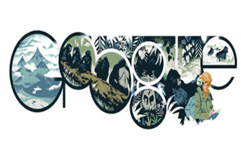 Dian Fossey murió asesinada en 1985 por cazadores furtivos en Ruanda.  (Foto tomada de google.com)