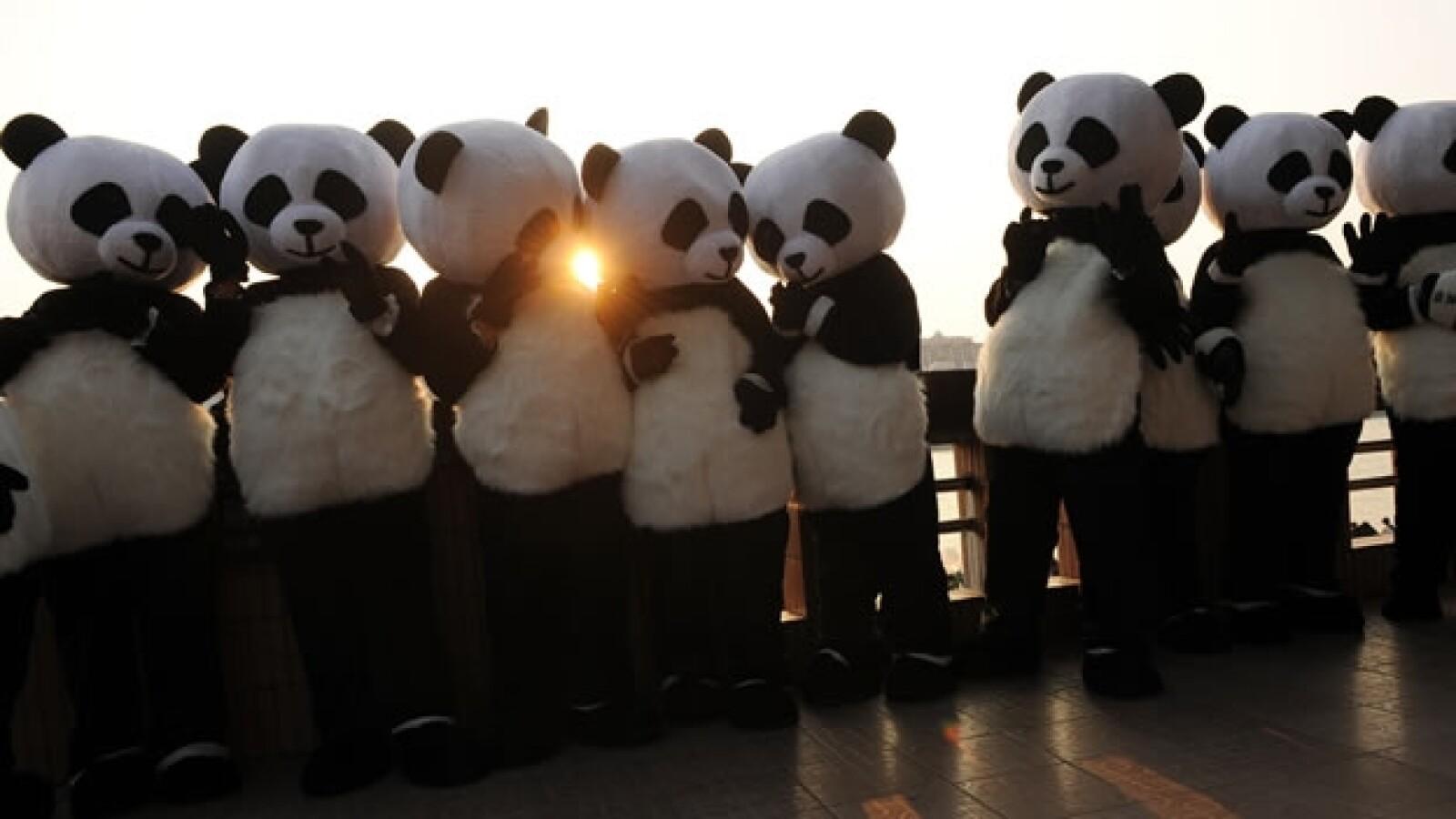 Activistas compiten para ser un embajador panda