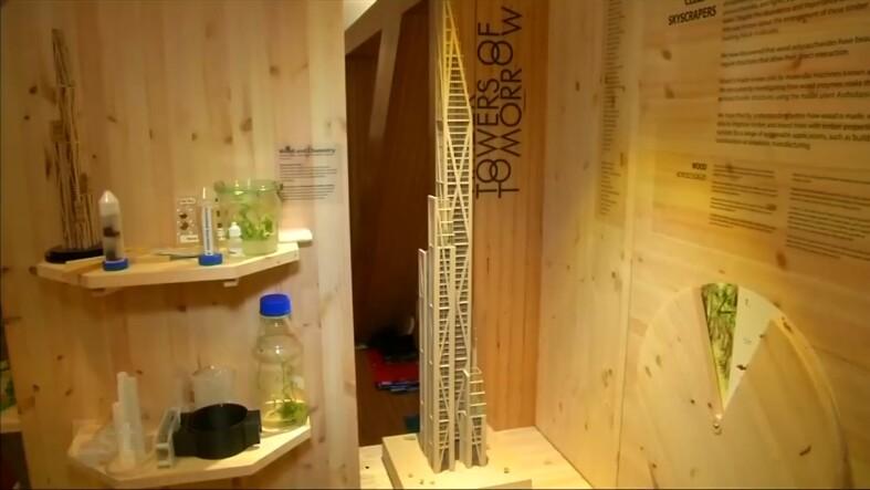 Rascacielos de madera