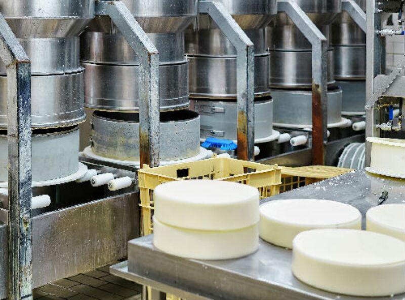f�brica de quesos