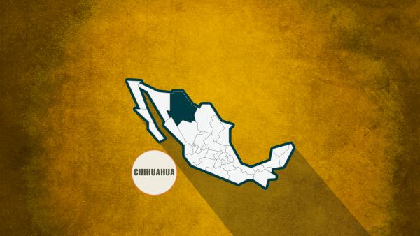 Chihuahua Alejandro Gutiérrez libre