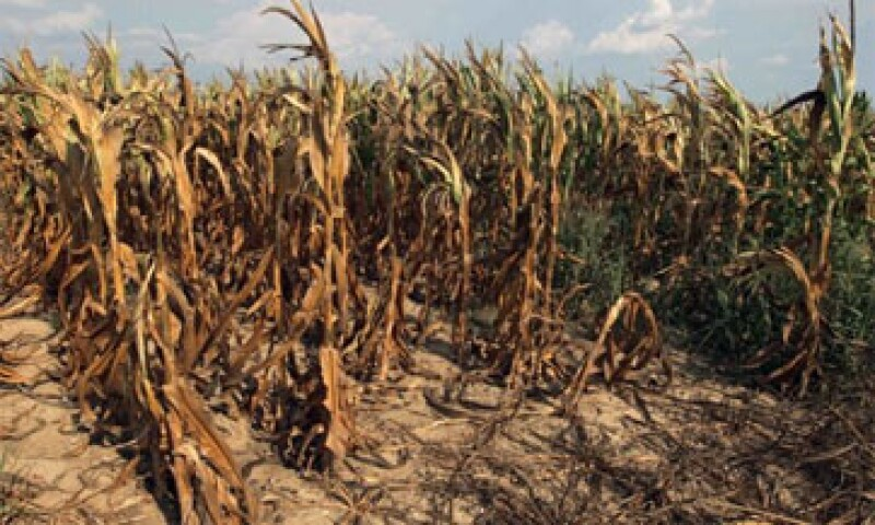 El presidente Barack Obama pidió al Congreso aprobar una ley agraria que solucione la sequía a largo plazo.  (Foto: Reuters)