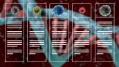 ¿Qué es un virus y cómo ataca a nuestro cuerpo?