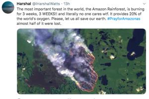 amazonia-incendio.png
