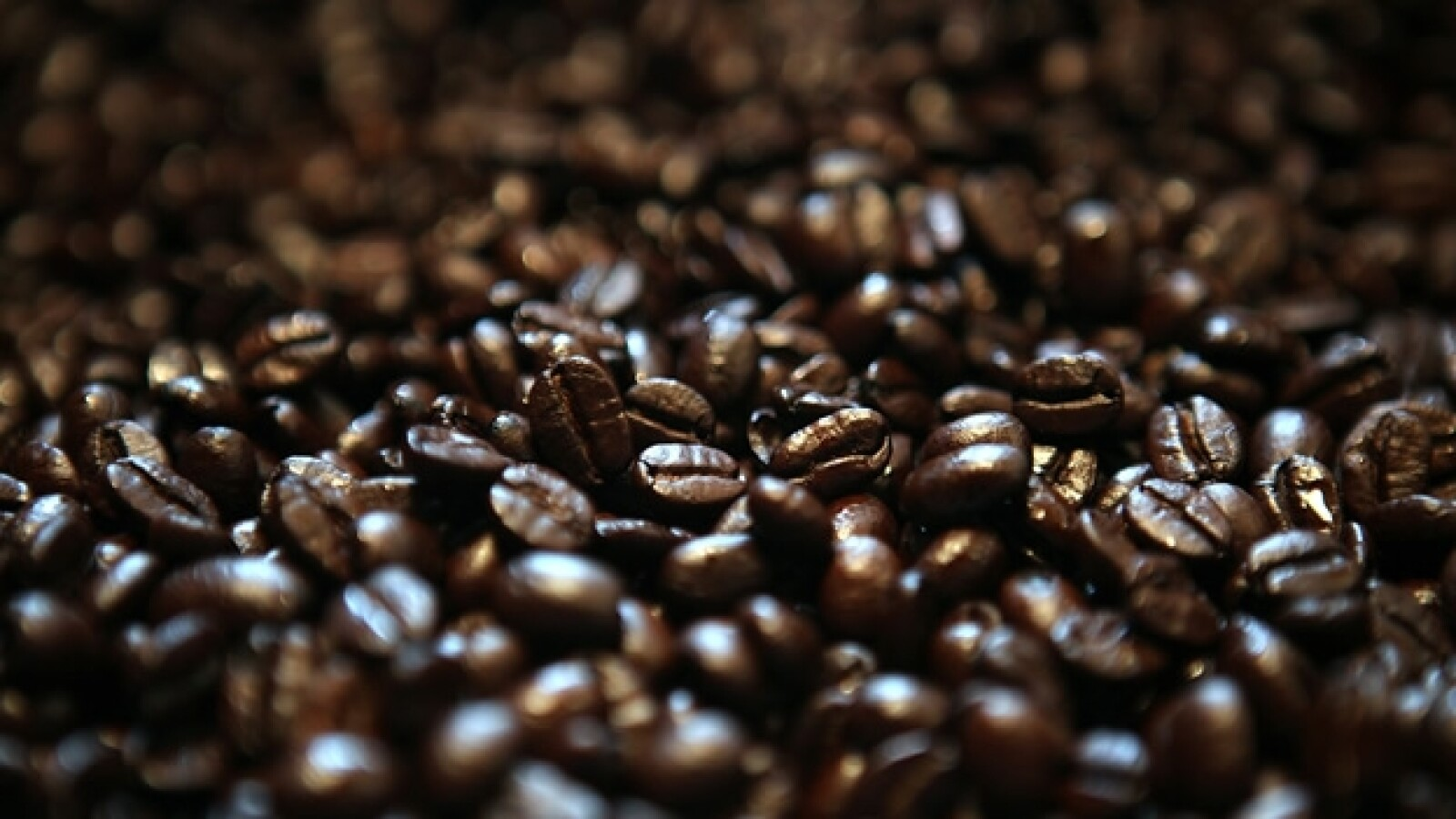 cafe granos