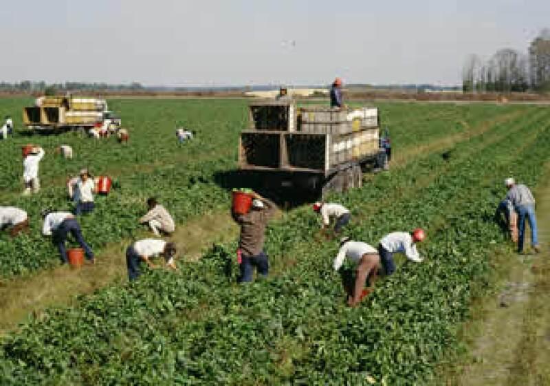 Los inmigrantes mexicanos en EU han disminuido por la crisis en ese país y la xenofobia. (Foto: Jupiter Images)
