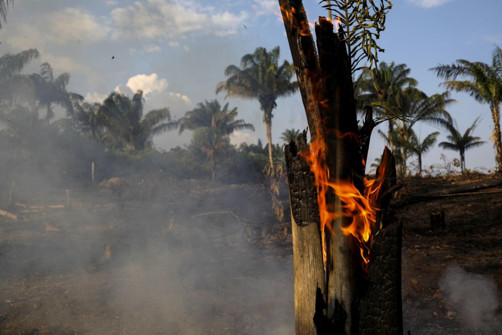 Incendio Amazonas-5