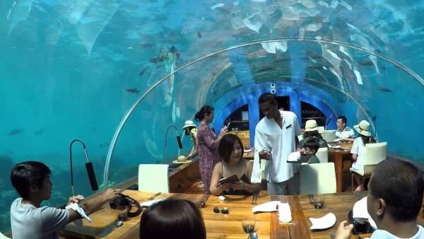 Cena con los peces en este restaurante bajo el mar
