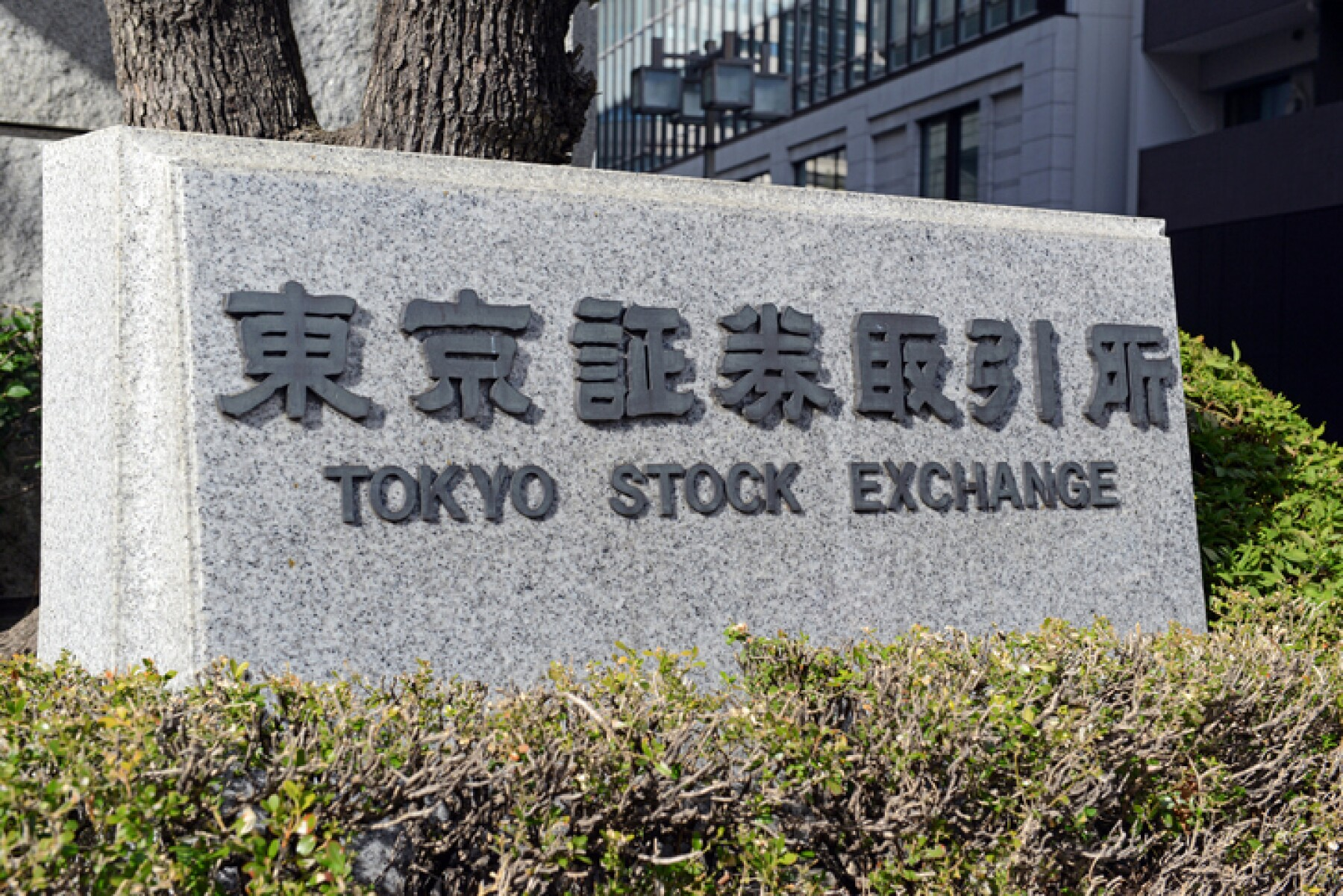 While below its 1989 record, the Nikkei 225 Index for the Tokyo Stock Exchange has been increasing the past nine years evidencing strong equity market confidence in Japan