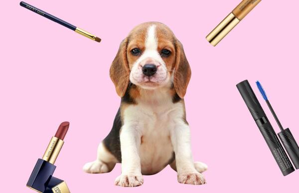 estee-lauder-maquillaje-animales-testing