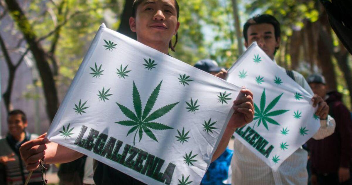 ?url=https%3A%2F%2Fcdn 3.expansion.mx%2Fa6%2F03%2Fe0d618ae415880a0d0cbff5e41bd%2F2vhpd5z4s24h2r5c3ewwyrvpce Importante senador mexicano apresenta próximos passos para a legalização da maconha