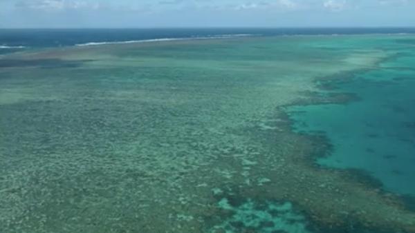 Crucero de Carnival vertió miles de litros de desechos en Gran Barrera de Coral
