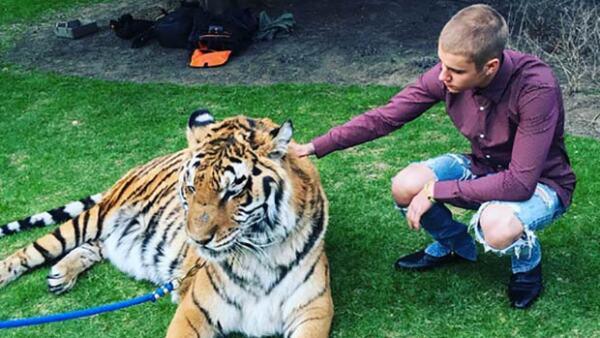 Jeremy Bieber celebró su compromiso con Chelsey Rebelo de la forma más rara posible: con un tigre, superhéroes y otros extraños detalles.