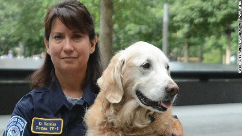 bretagne perro rescatista 9/11