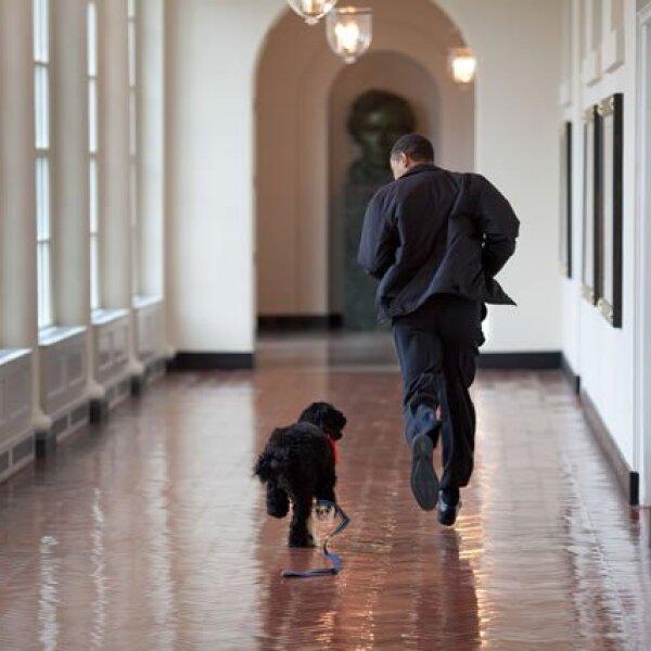 Obama corre junto al perro de la familia, Bo.