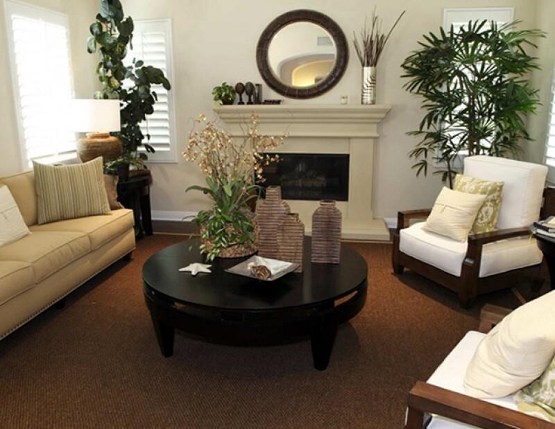 Las plantas ayudan al flujo de energía. Coloca plantas en tu sala, cocina y cuarto de estar.