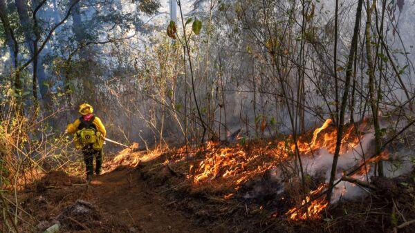Brigada ejidal de Atlapulco y brigadistas de CONAFOR sofocan el incendio en el Valle de Potrero, Acazulco, en el Estado de México.