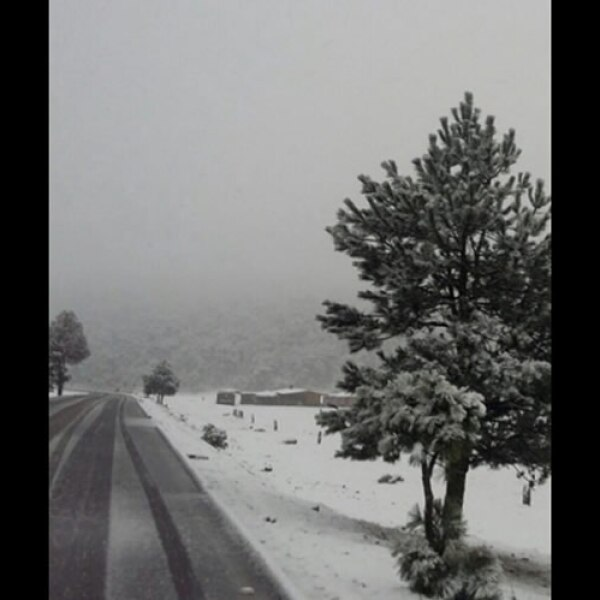 La nevada inició alrededor de las 8:00 horas de este miércoles.
