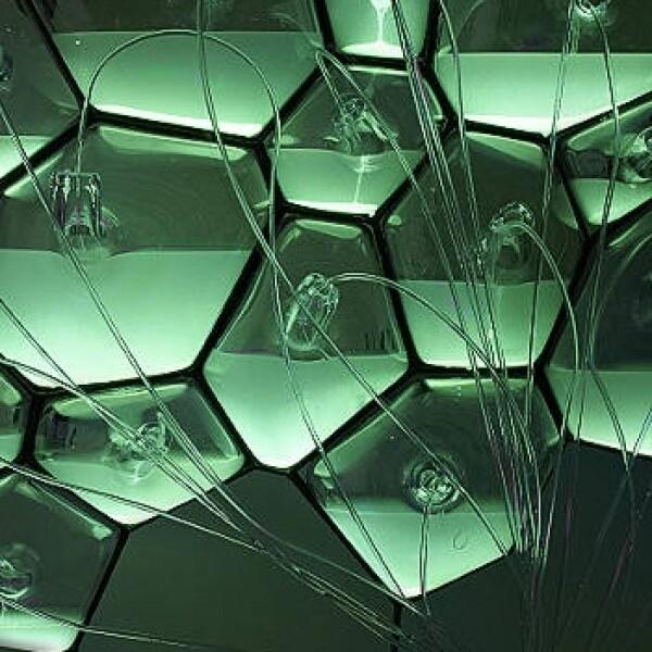 bacteria genera luz lamparas