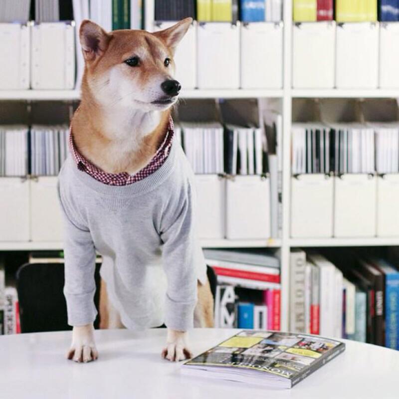 El éxito de las fotos de Budhi fue tal, que incluso se lanzó un libro en el que éste da consejos de cómo vestirse.
