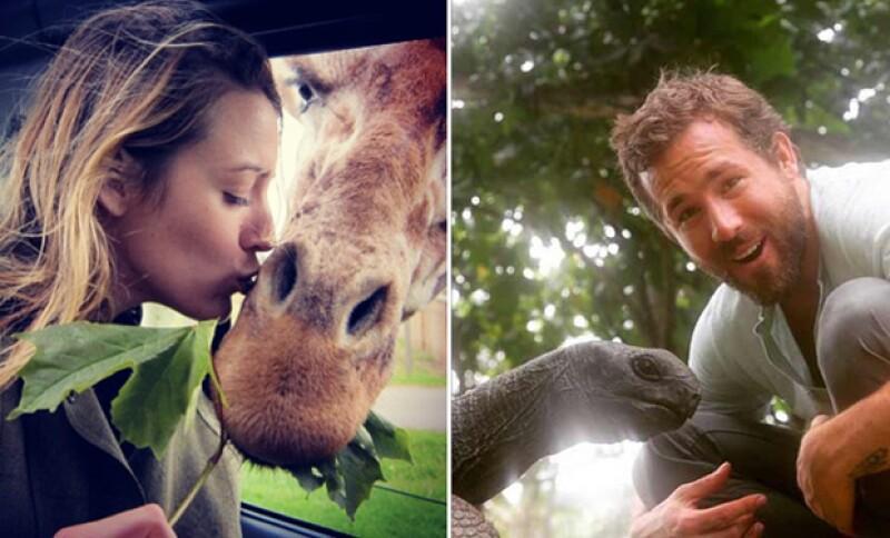 La pareja ama estar en contacto con la naturaleza.