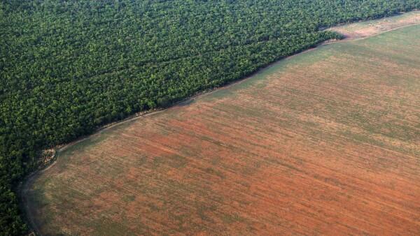 Deforestación Amazonas-4