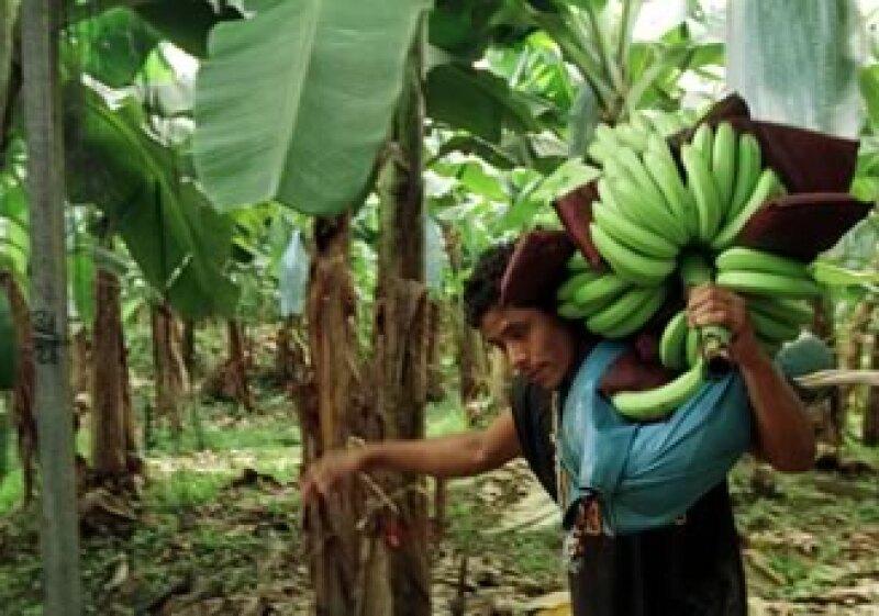 Bancarizar es una forma de promover al emprendedor rural. (Foto: Archivo)