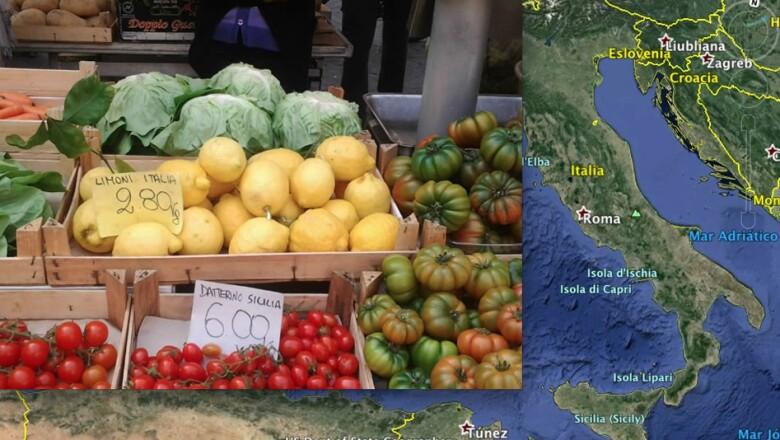 CNNMéxico pidió fotografías de limones alrededor del mundo