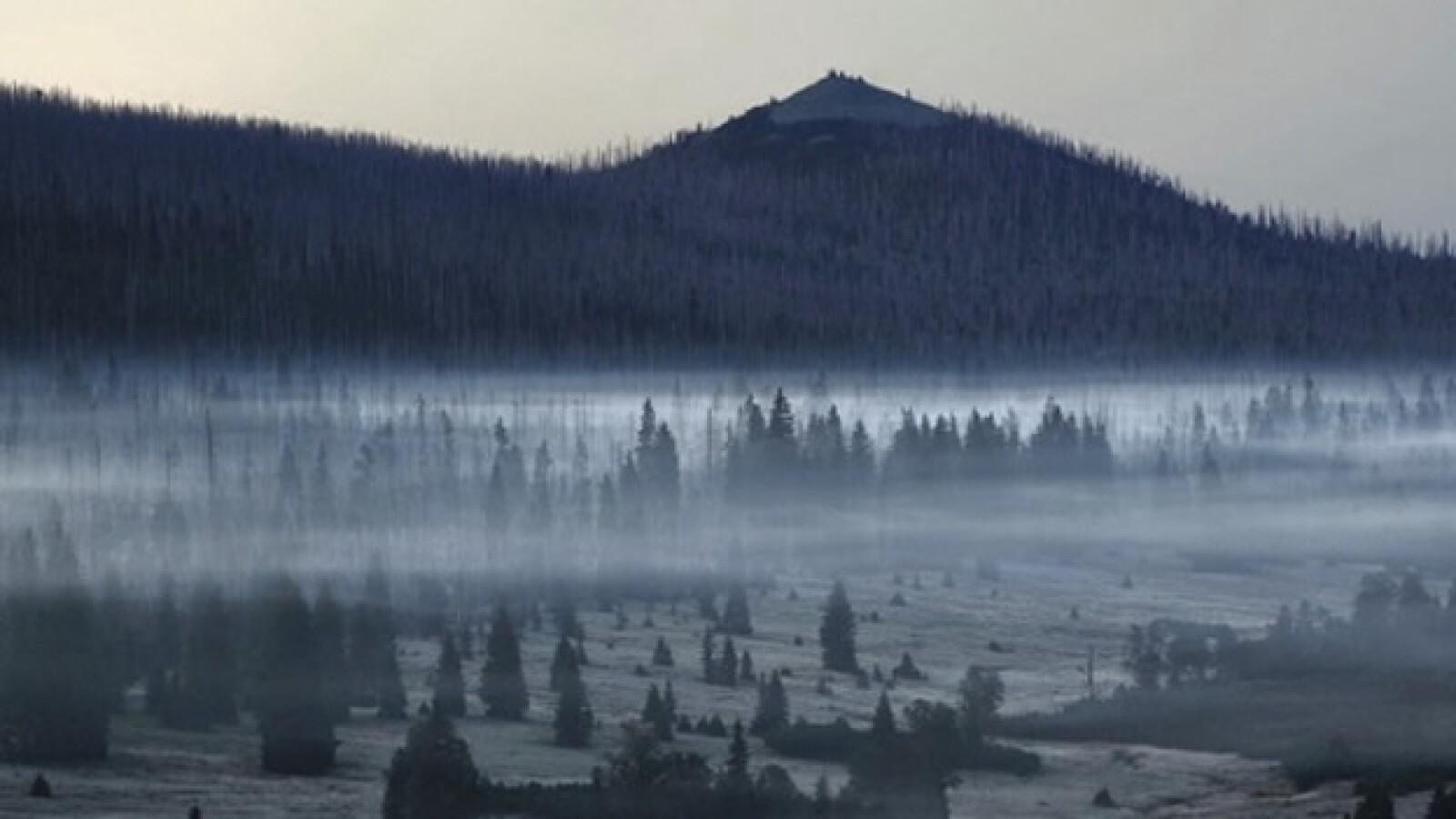 El Bosque del Alto Palatinado, de Alemania