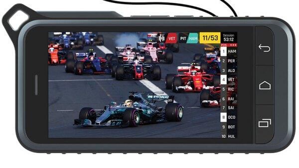 F1 Vision