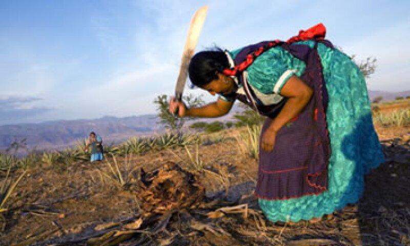 Una desaceleración económica implica el riesgo de recaídas a la pobreza y la pobreza extrema, según el Banco Mundial. (Foto: Getty Images)